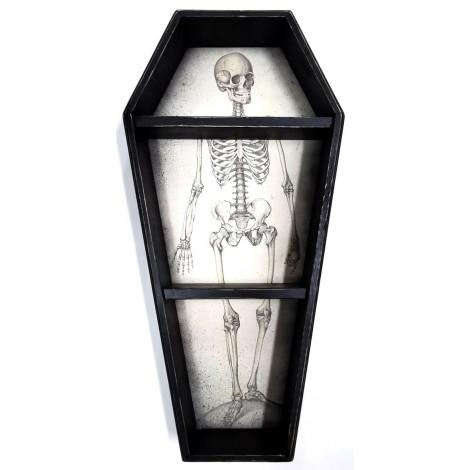 Barecha Bianco Antico Anatomico